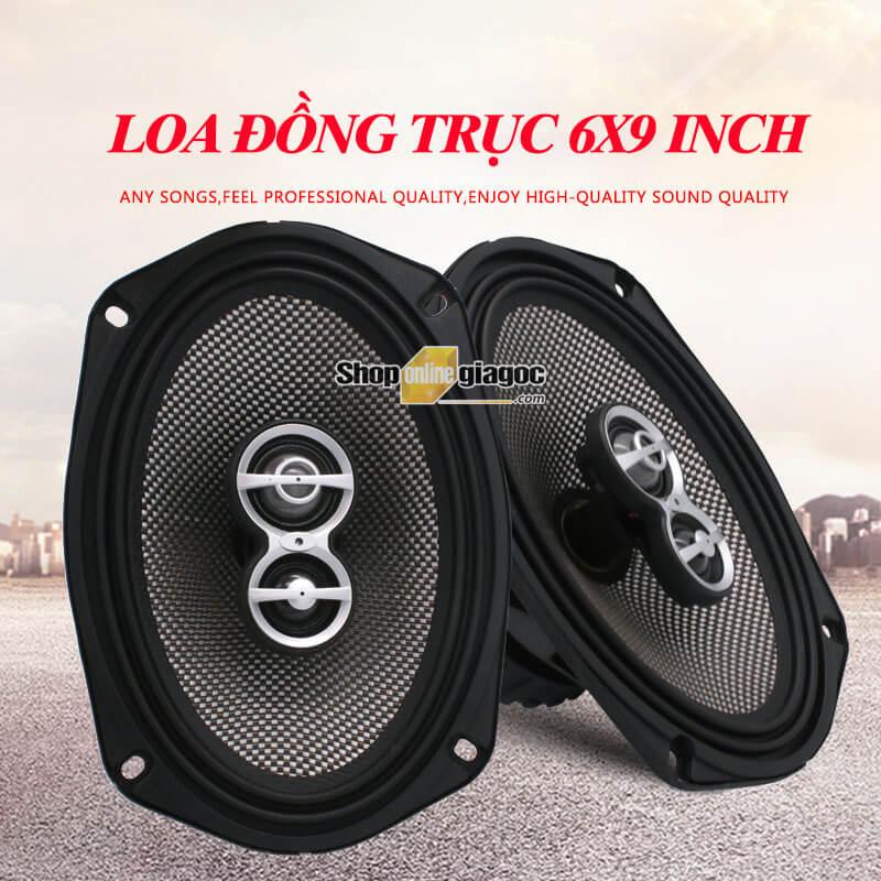 Loa Ô Tô Đồng Trục Hai Chiều 6x9 Inch 698D